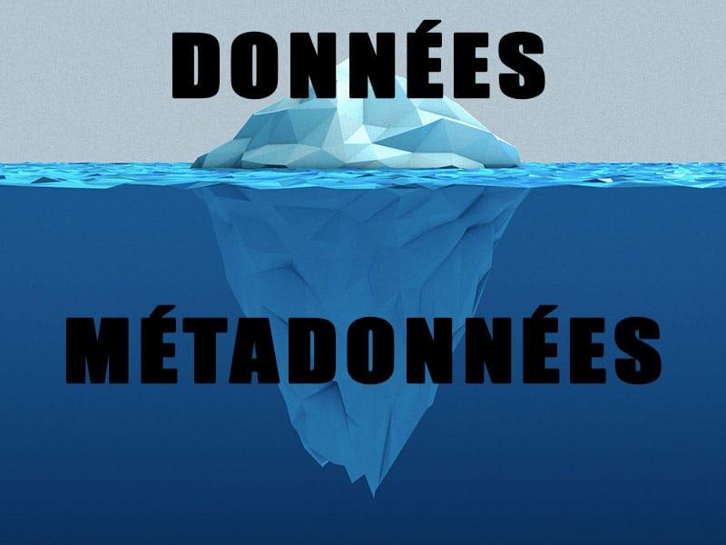 role des métadonnées