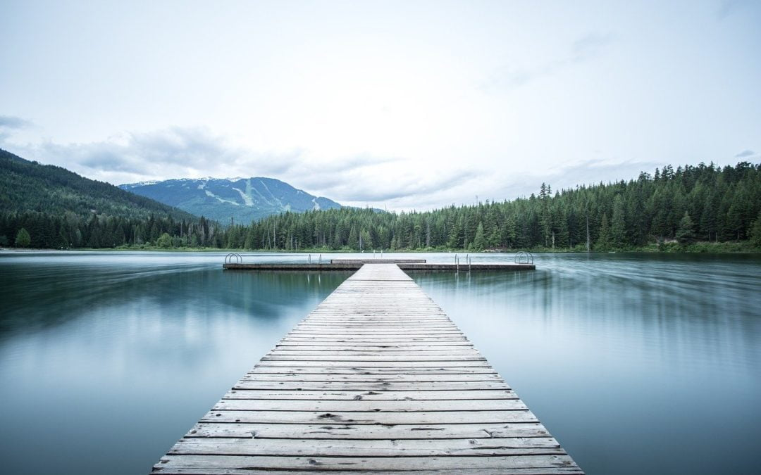 Data Lakes: The benefits and challenges