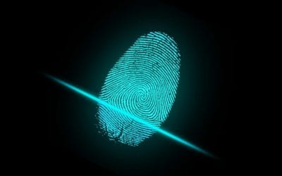 What is Data Fingerprinting and similarity detection?