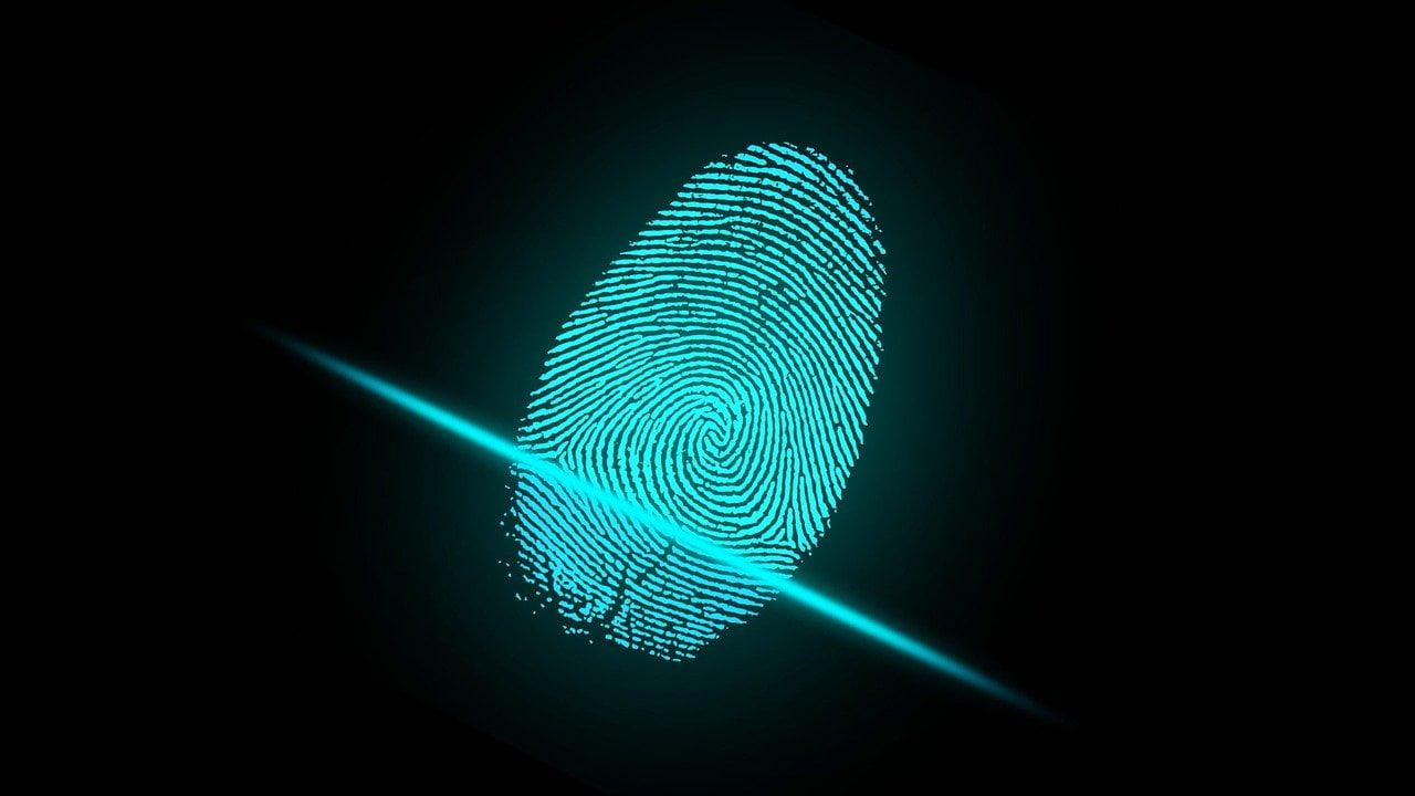 data-fingerprinting