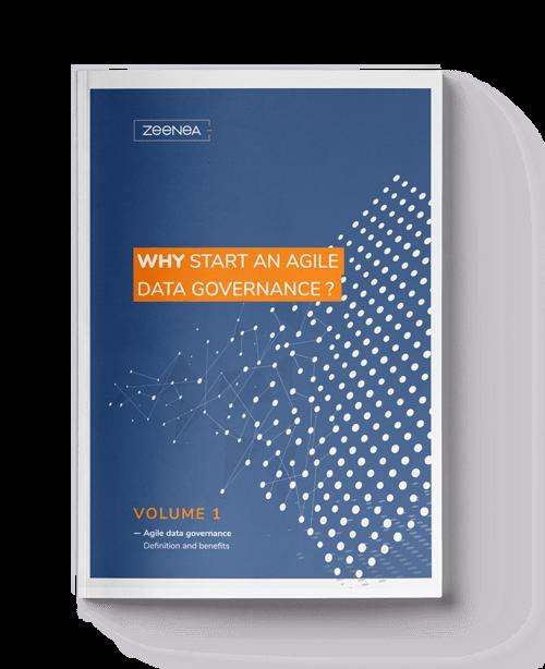 agile data governance white paper