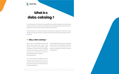 What is a data catalog?